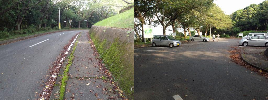 印旛沼公園 駐車場