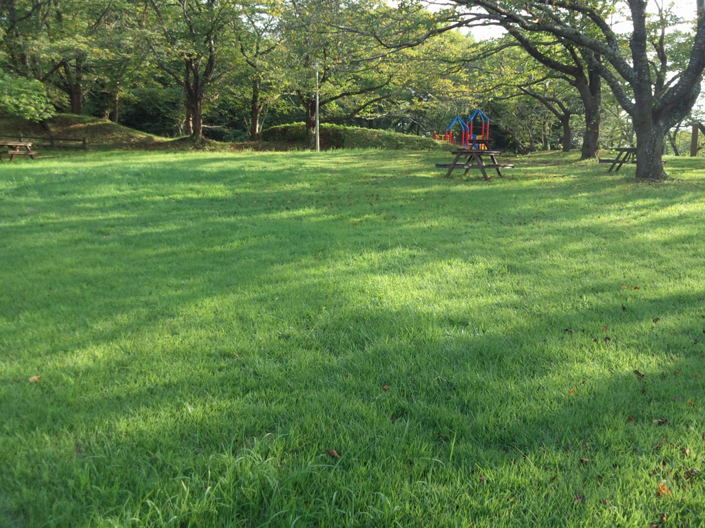 印旛沼公園 芝生広場