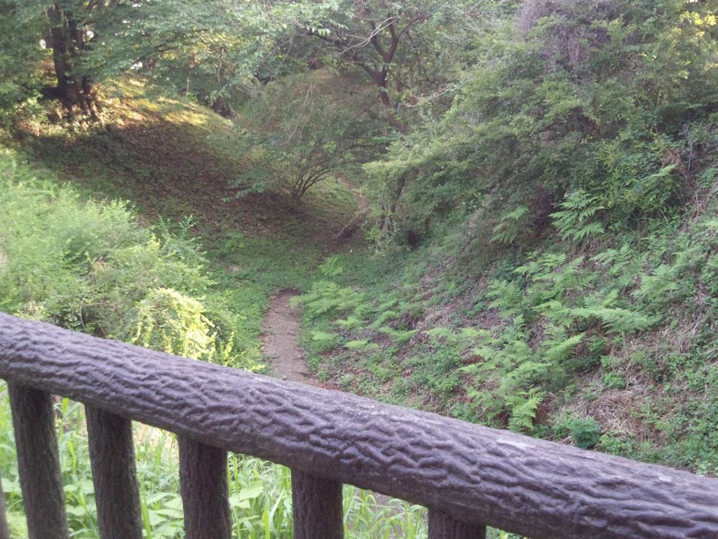 印旛沼公園 空堀