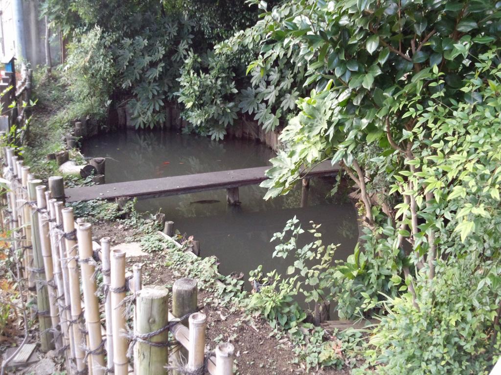 でいだらぼっち足跡の池