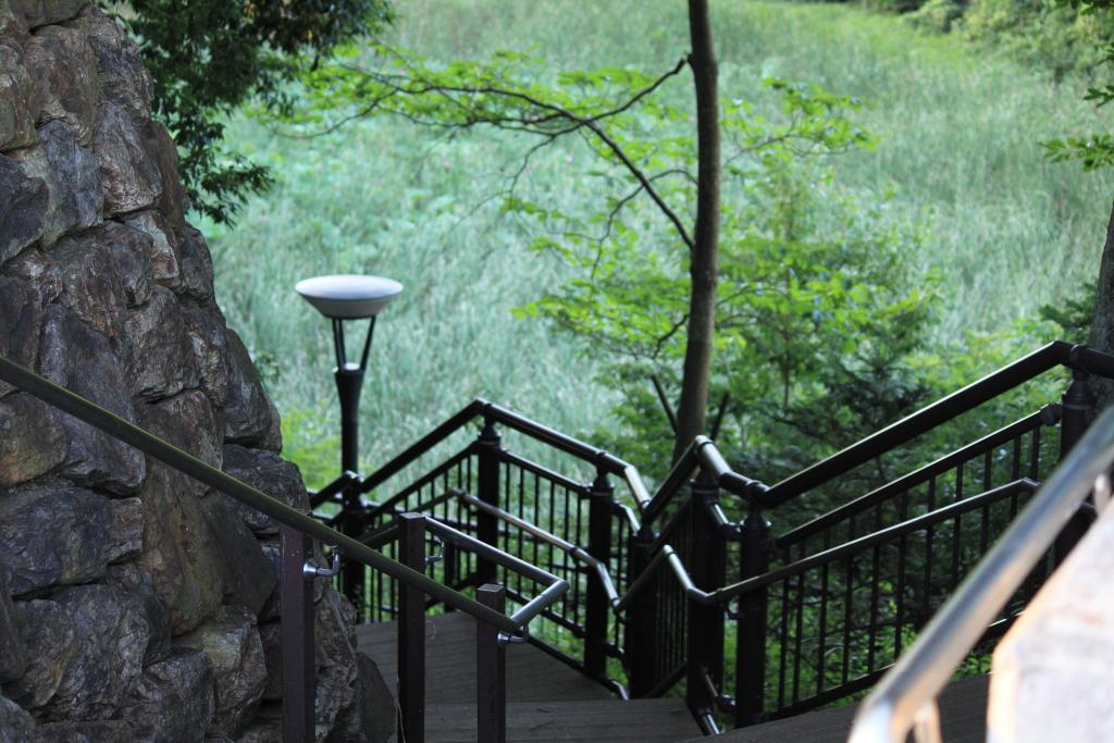 池への階段