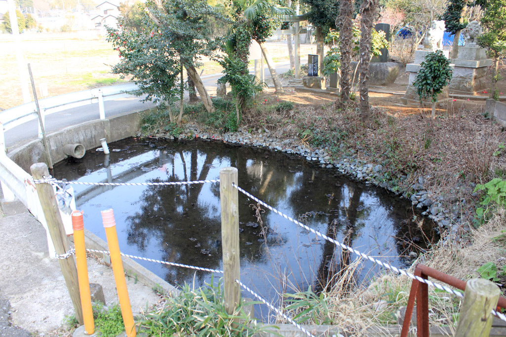 みたらしの池