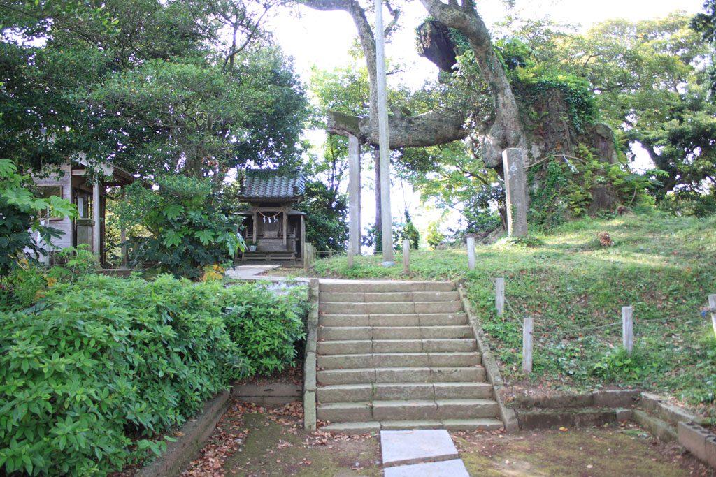 宇賀神社社殿と府馬の大クス