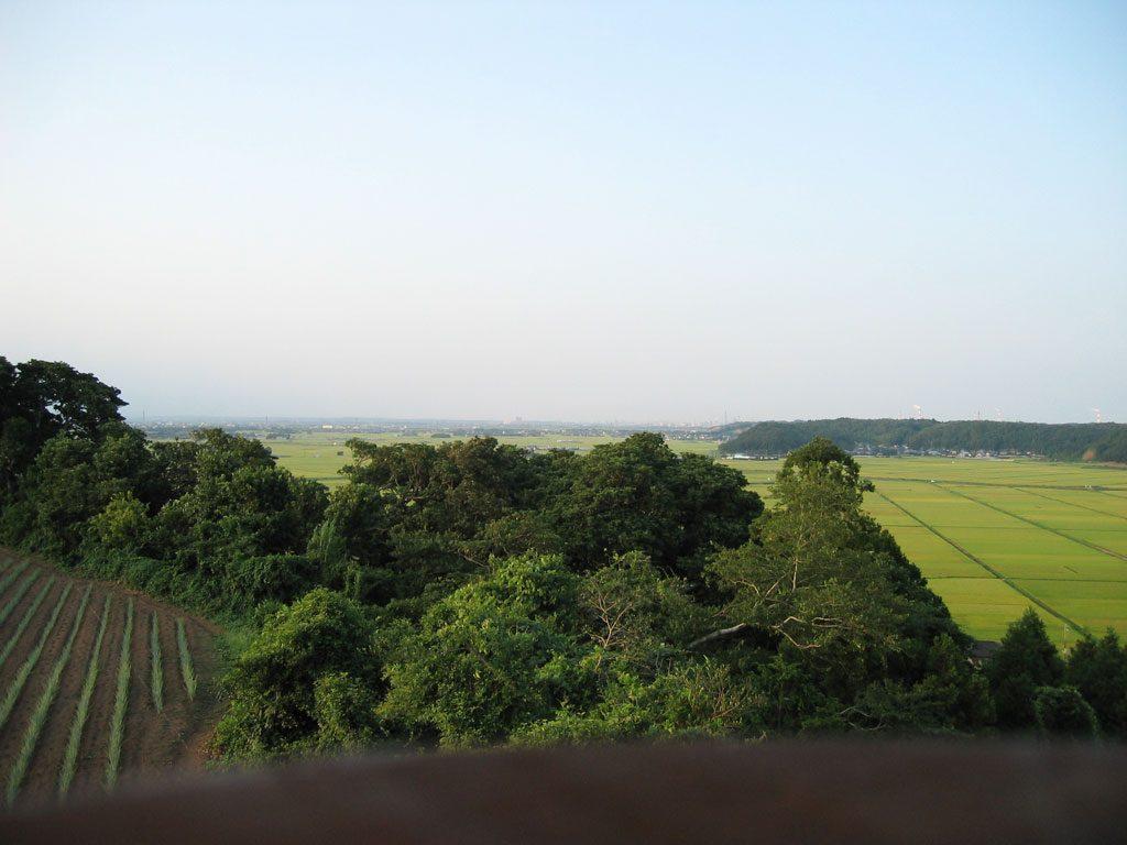 展望台からの眺め(2007)